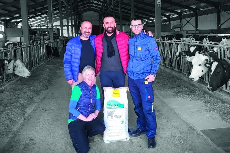 JOSERA DairySafe - desde el punto de vista de los veterinarios